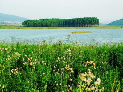 柳城天气预报30天查询,柳城县一个月天气
