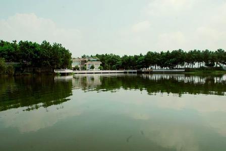 泸县天气预报30天查询,泸县一个月天气