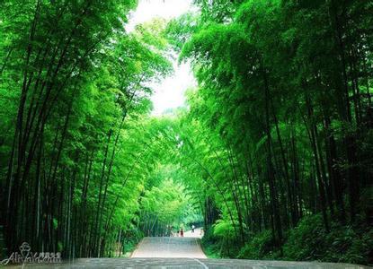 长宁天气预报30天查询,长宁县一个月天气